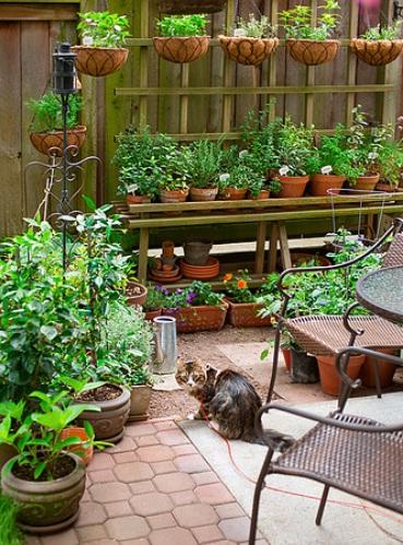 Urban garden inspiration downsize my space for Small garden inspiration