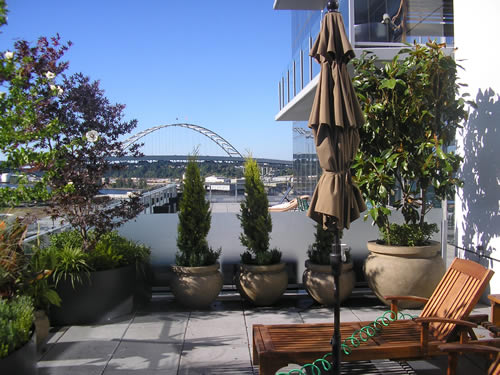 rooftop garden 3 digg pearl Urban garden inspiration