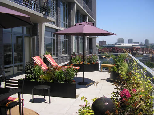 rooftop garden Urban garden inspiration