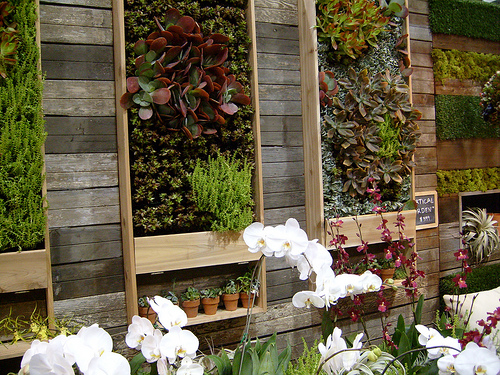 vertical garden Urban garden inspiration