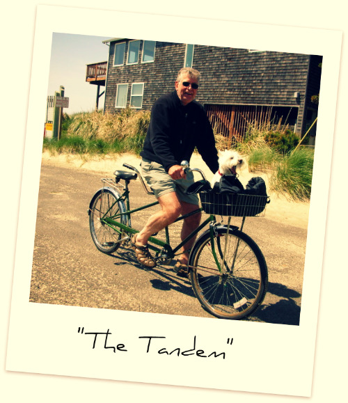 the tandem My love affair with Schwinn