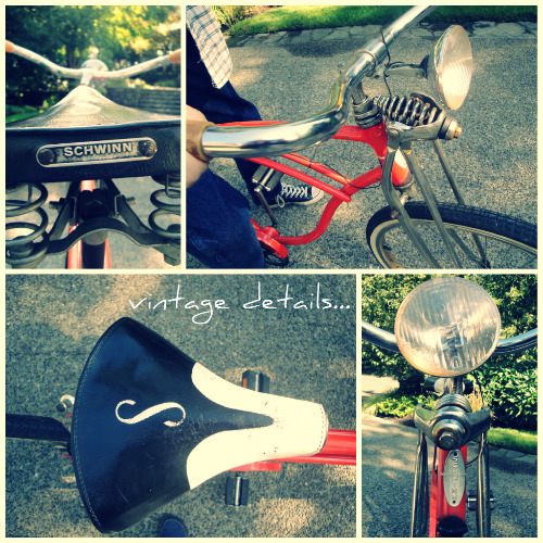 vintage details My love affair with Schwinn