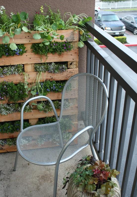 43883504 UerzoZOC c Urban Gardens Galore