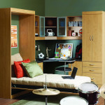 Need a guest room? Get a Murphy Bed!